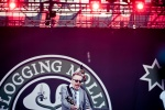 Flogging Molly, Sziget, фото
